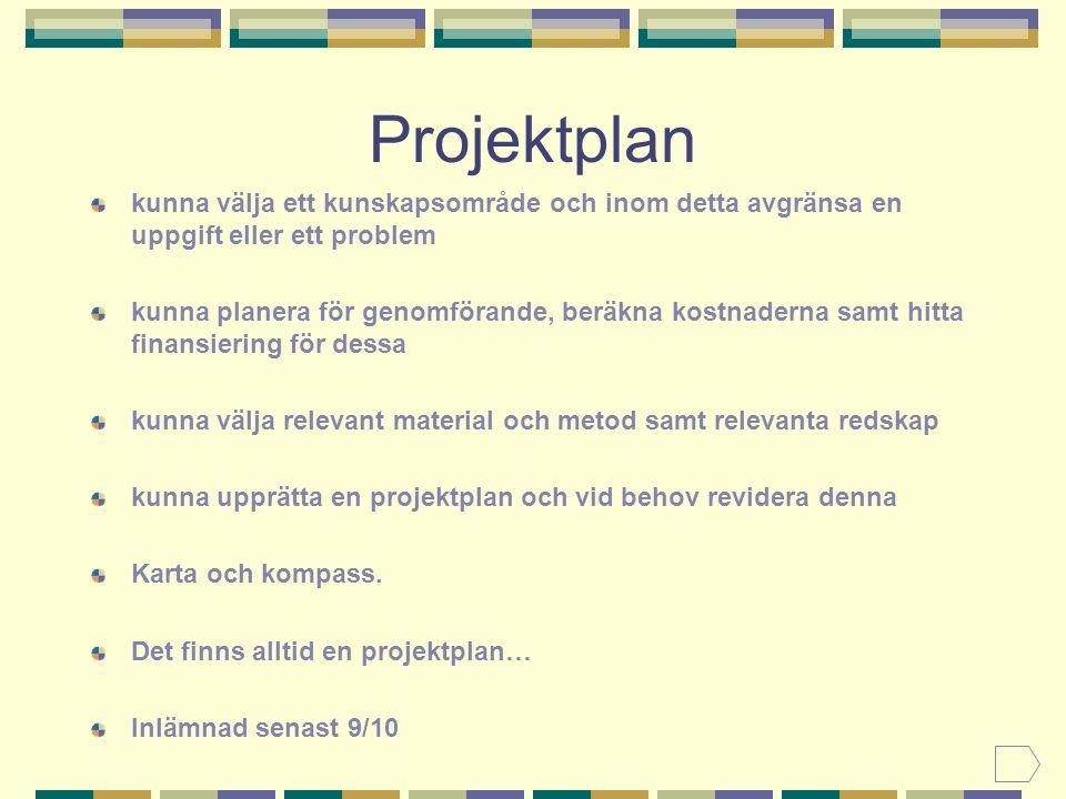 Projektplan kunna välja ett kunskapsområde och inom detta avgränsa en uppgift eller ett problem.