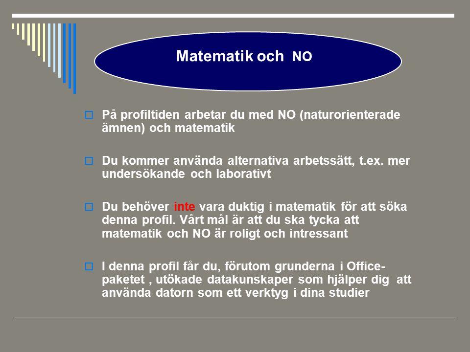 Matematik och NO På profiltiden arbetar du med NO (naturorienterade ämnen) och matematik.