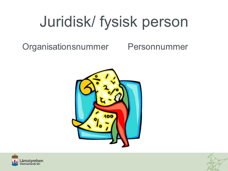 Juridisk/ fysisk person