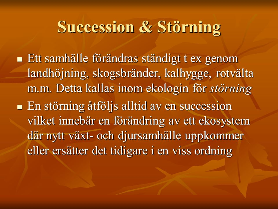 Succession & Störning