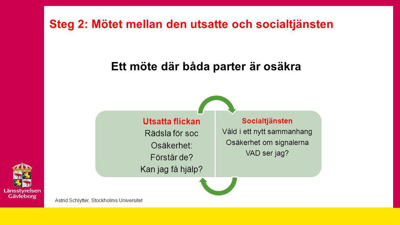 Steg 2: Mötet mellan den utsatte och socialtjänsten
