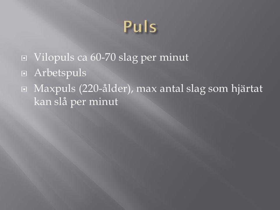 Puls Vilopuls ca 60-70 slag per minut Arbetspuls