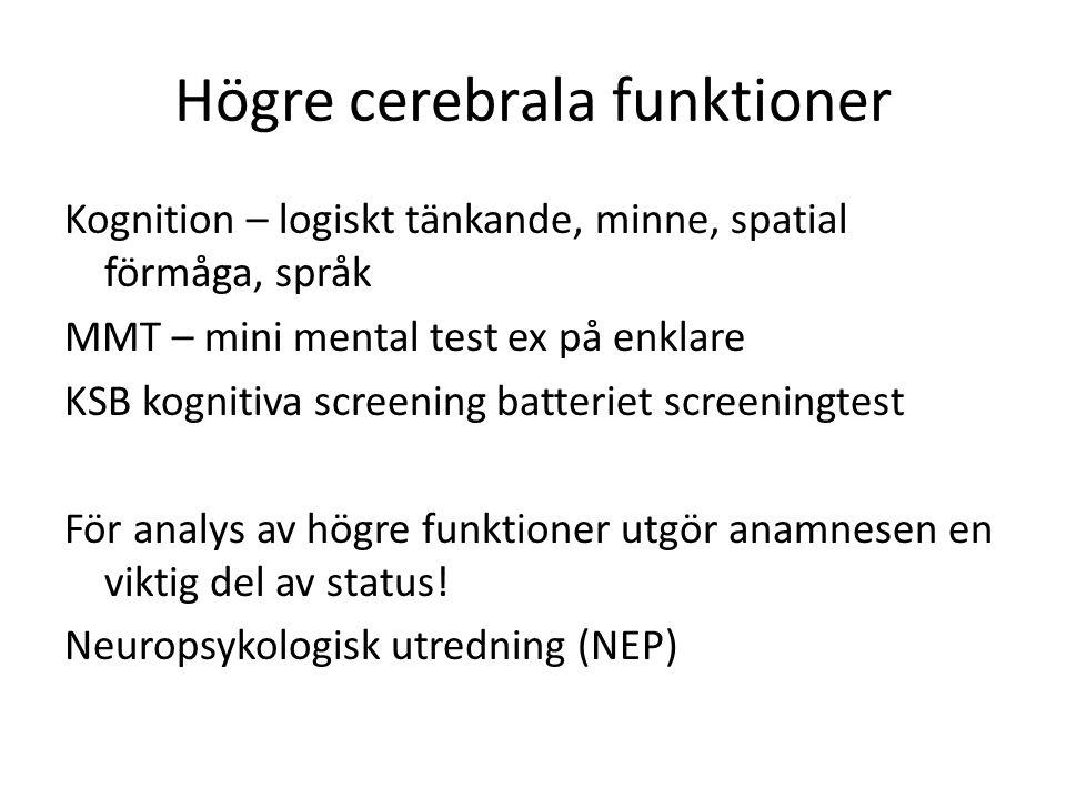Högre cerebrala funktioner