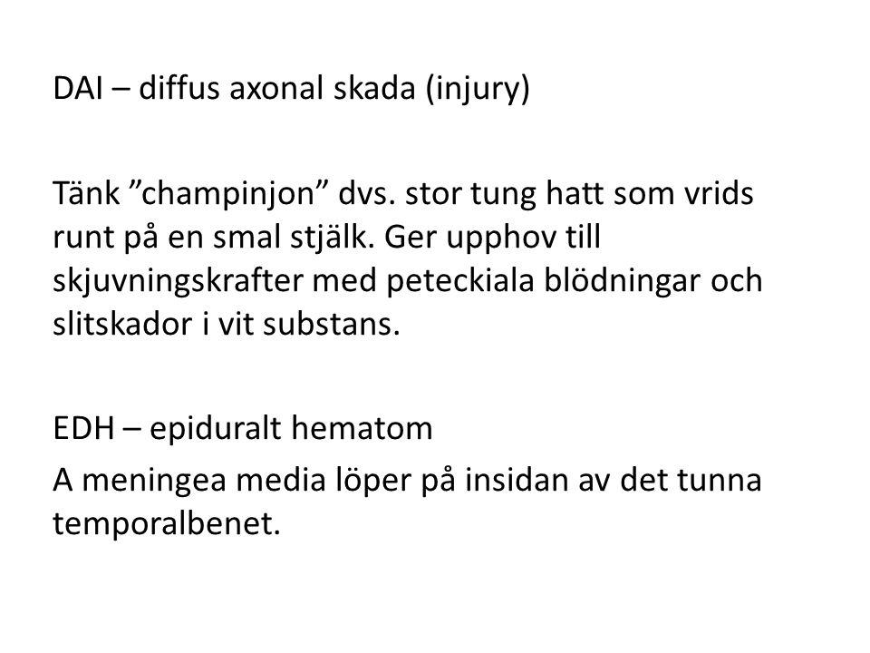 DAI – diffus axonal skada (injury) Tänk champinjon dvs