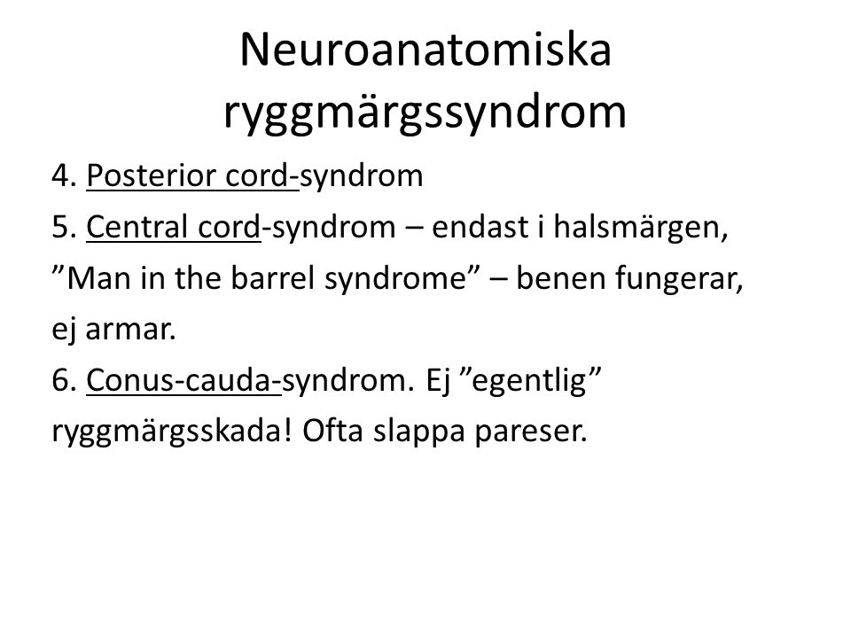 Neuroanatomiska ryggmärgssyndrom