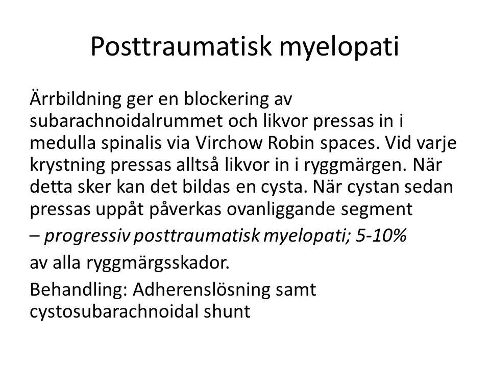 Posttraumatisk myelopati