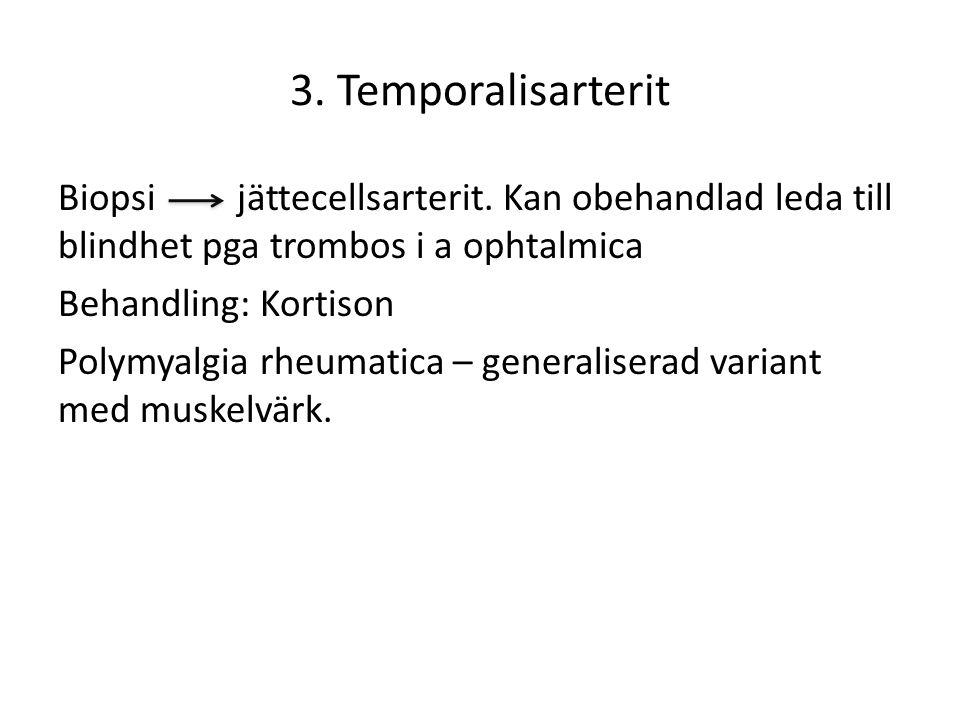 3. Temporalisarterit