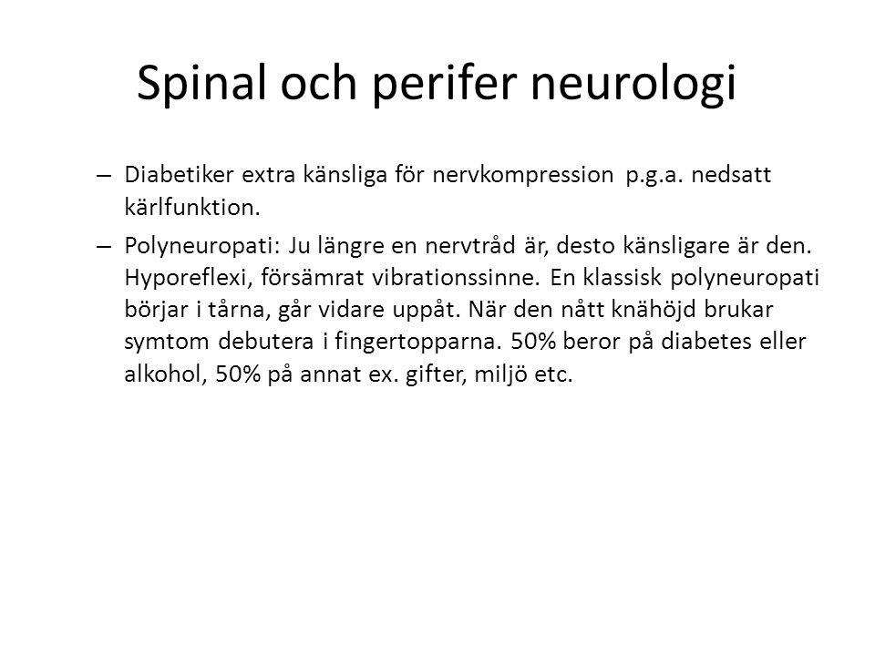 Spinal och perifer neurologi