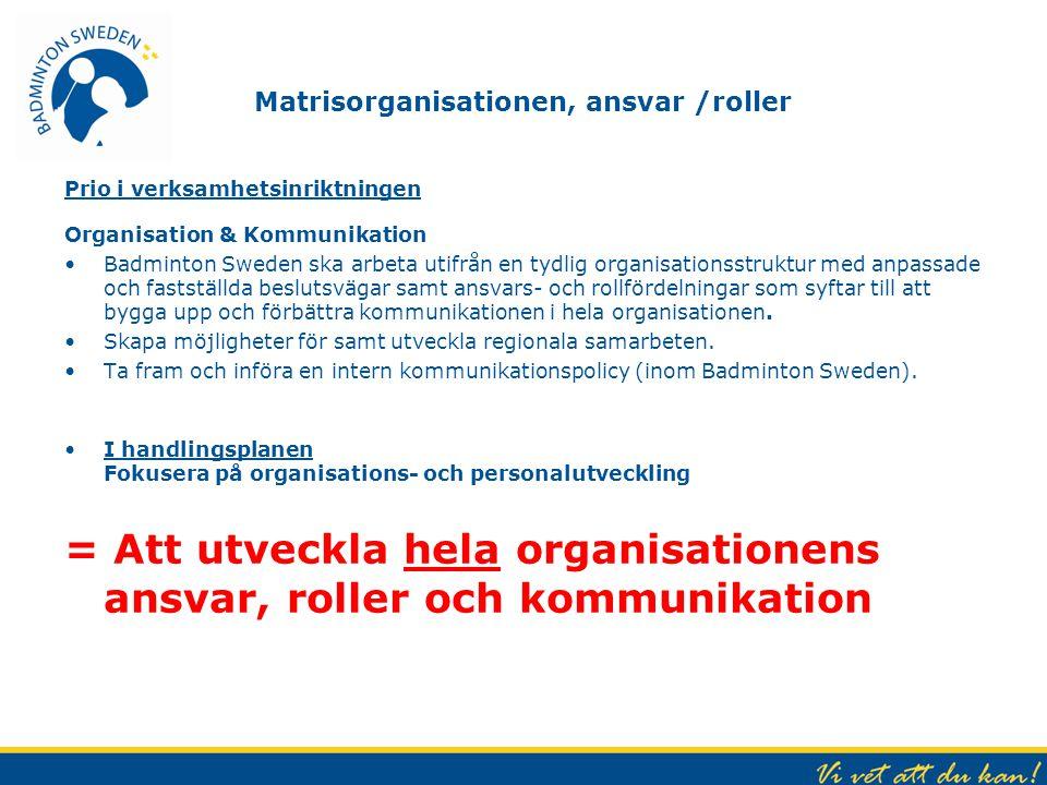 Matrisorganisationen, ansvar /roller