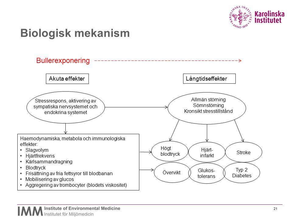 Biologisk mekanism Bullerexponering Akuta effekter Långtidseffekter