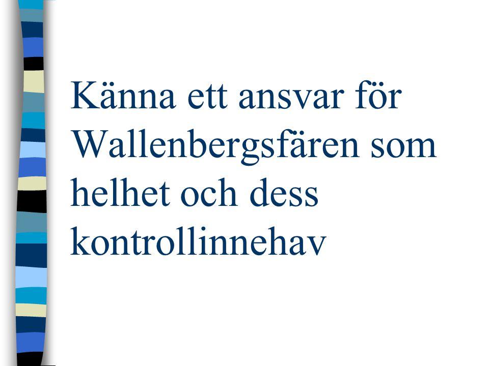 Känna ett ansvar för Wallenbergsfären som helhet och dess kontrollinnehav