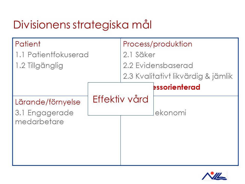 Divisionens strategiska mål