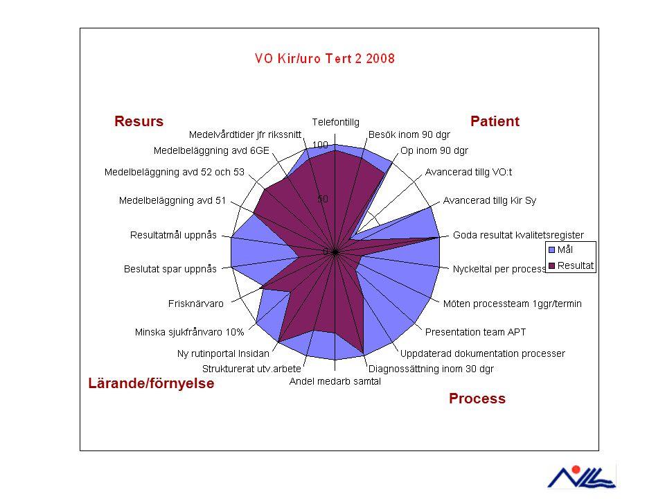 Resurs Patient Lärande/förnyelse Process