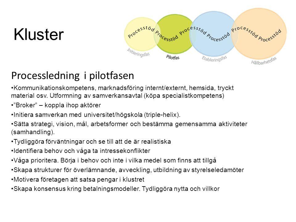 Kluster Processledning i pilotfasen