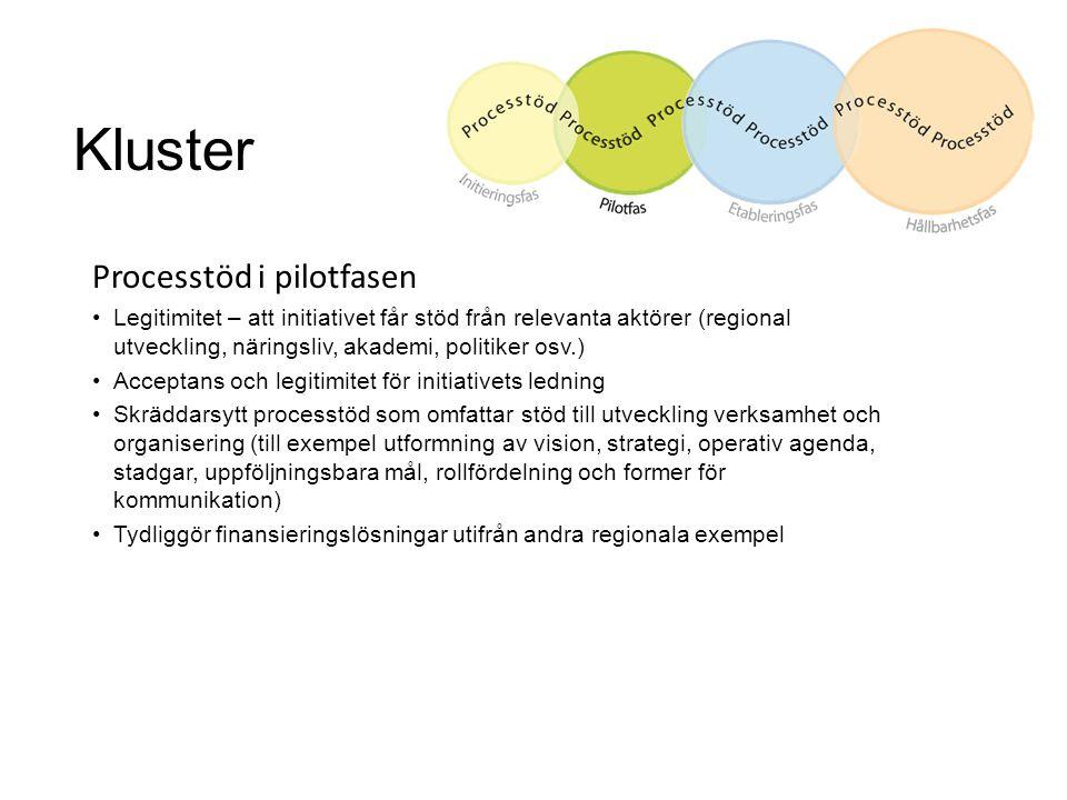 Kluster Processtöd i pilotfasen