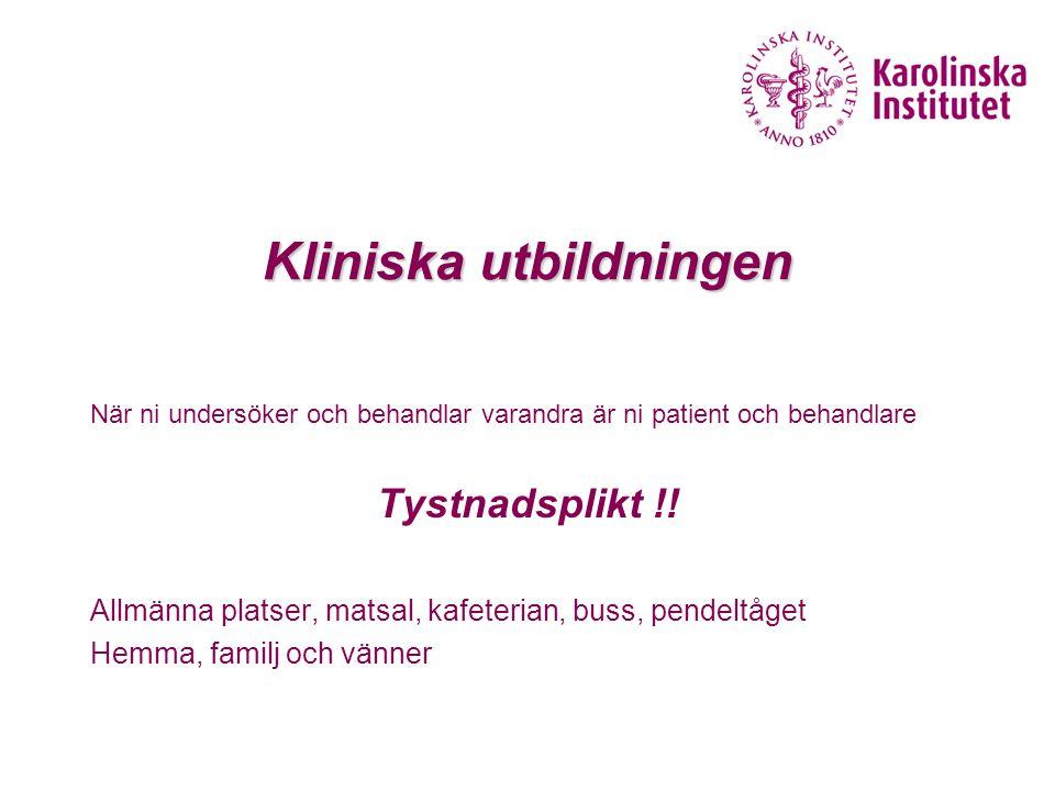 Kliniska utbildningen
