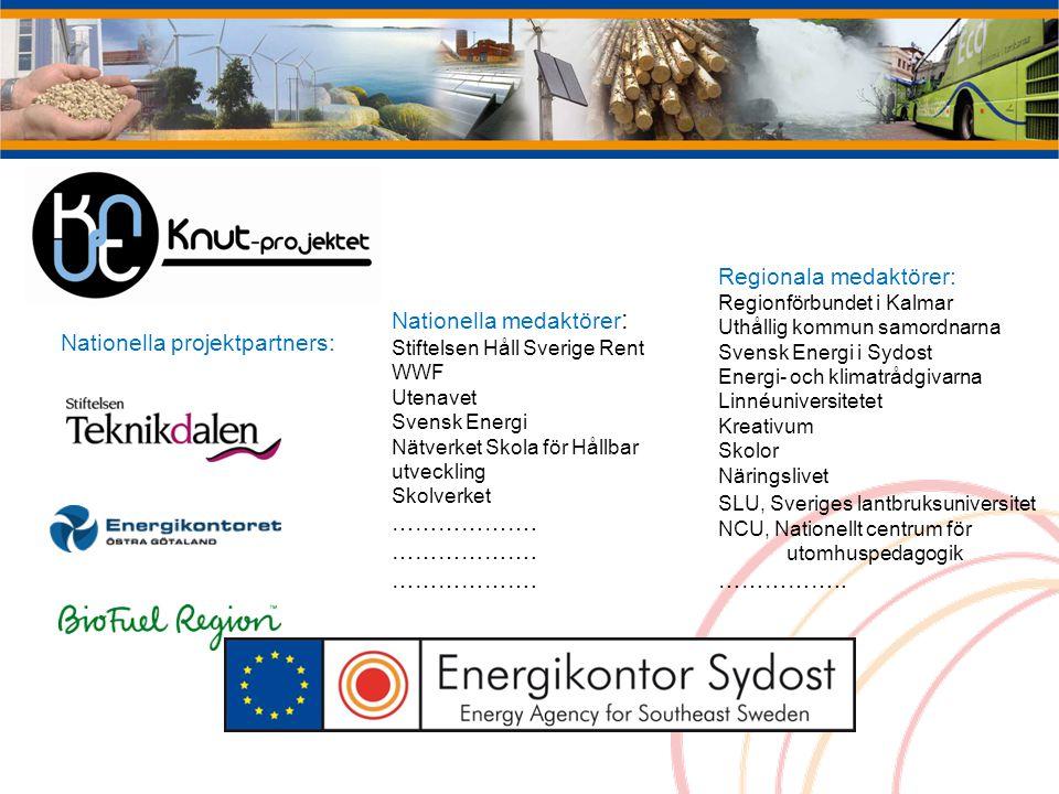 Regionala medaktörer: