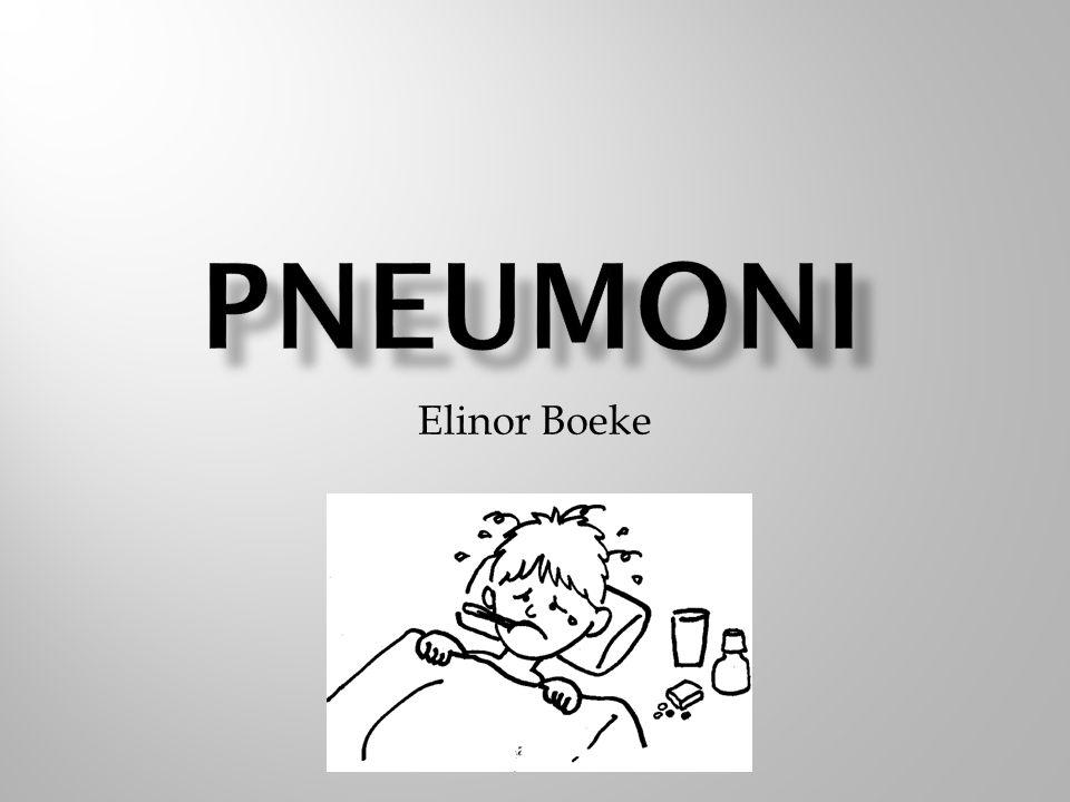 PNEUMONI Elinor Boeke