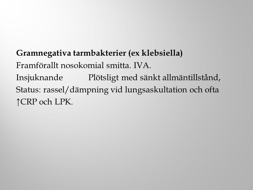 Gramnegativa tarmbakterier (ex klebsiella)