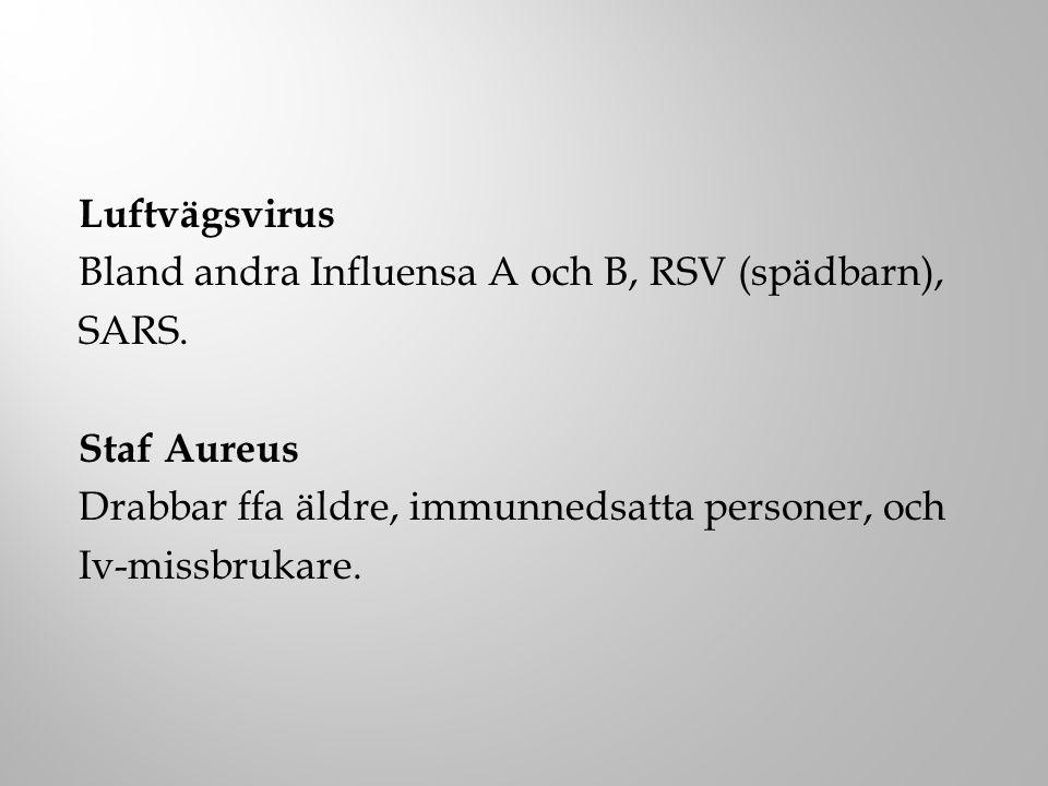 Bland andra Influensa A och B, RSV (spädbarn), SARS. Staf Aureus