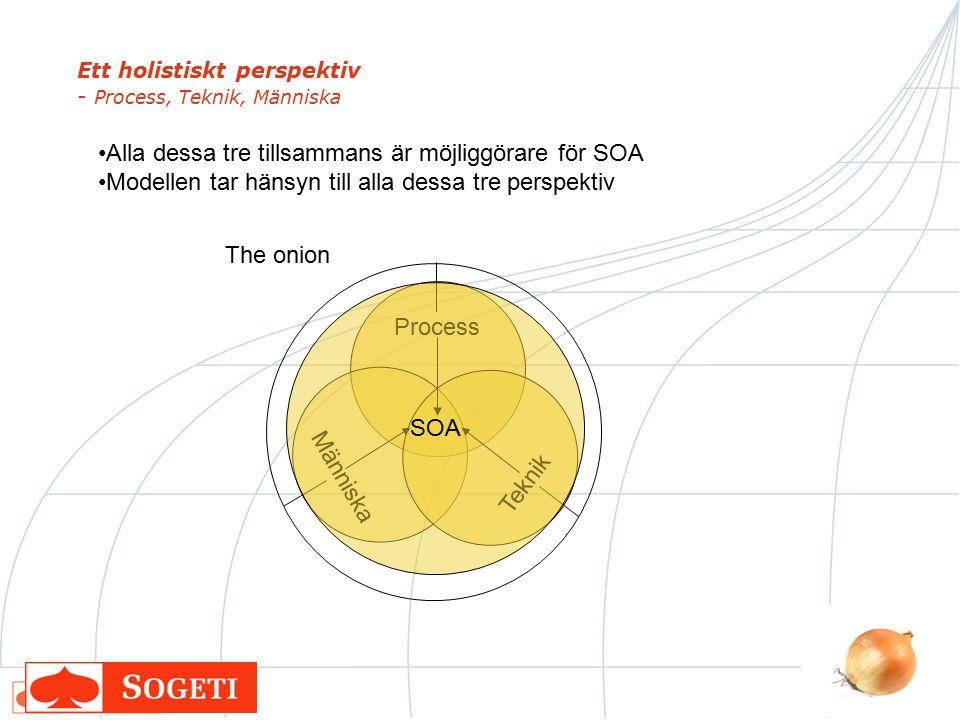 Ett holistiskt perspektiv - Process, Teknik, Människa