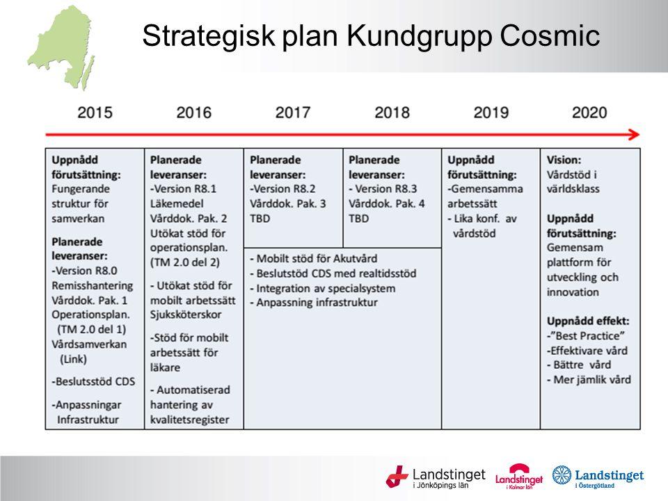 Strategisk plan Kundgrupp Cosmic