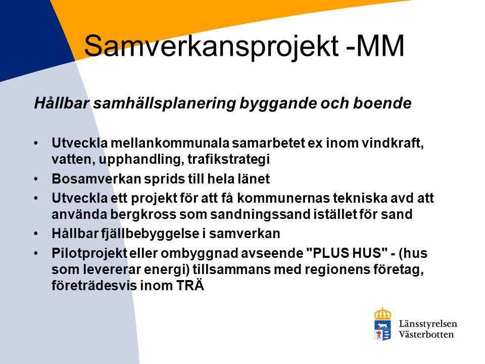 Samverkansprojekt -MM