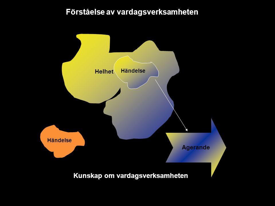 Förståelse av vardagsverksamheten Kunskap om vardagsverksamheten