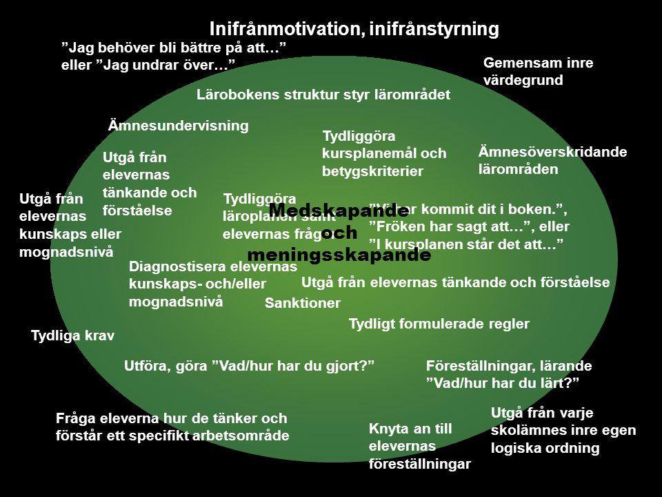 Inifrånmotivation, inifrånstyrning Medskapande och meningsskapande