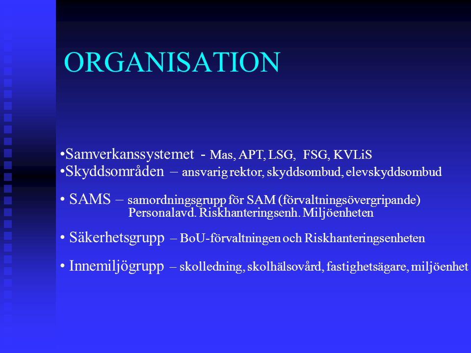 ORGANISATION Samverkanssystemet - Mas, APT, LSG, FSG, KVLiS