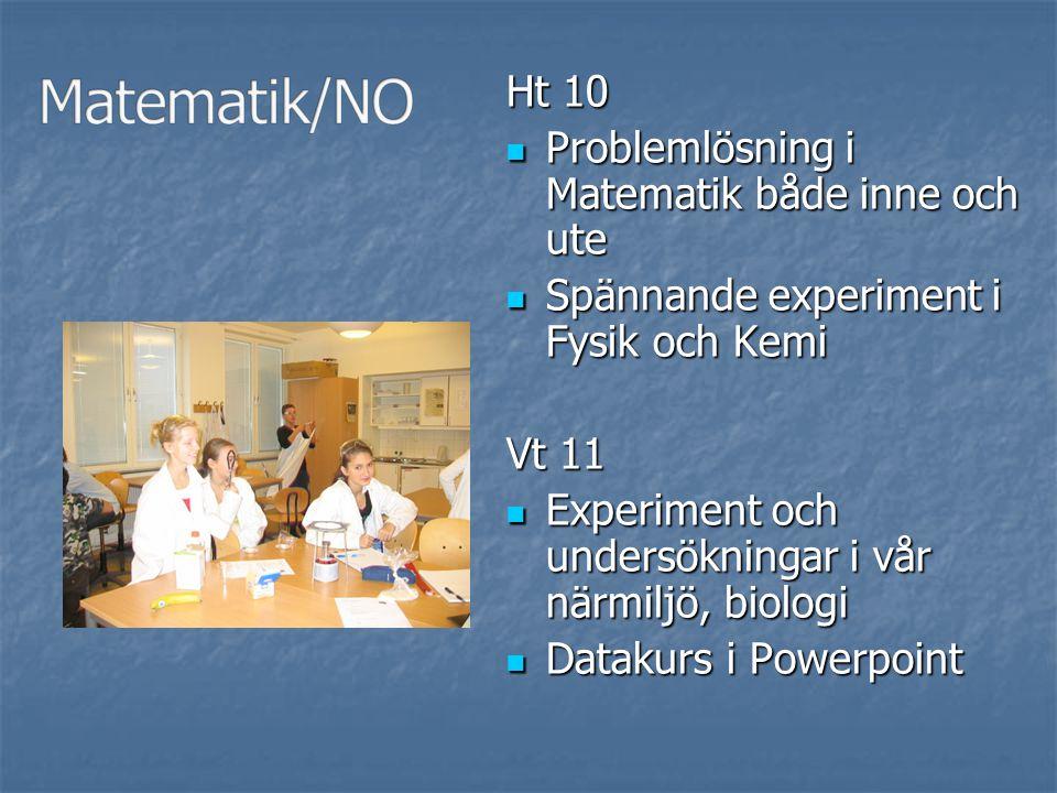 Matematik/NO Ht 10 Problemlösning i Matematik både inne och ute