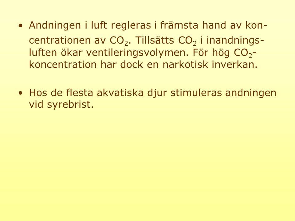 Andningen i luft regleras i främsta hand av kon-centrationen av CO2