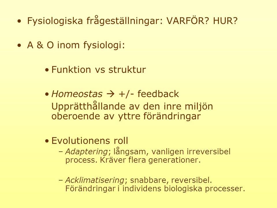 Fysiologiska frågeställningar: VARFÖR HUR A & O inom fysiologi: