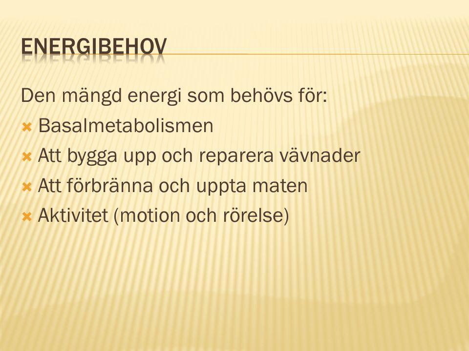 Energibehov Den mängd energi som behövs för: Basalmetabolismen