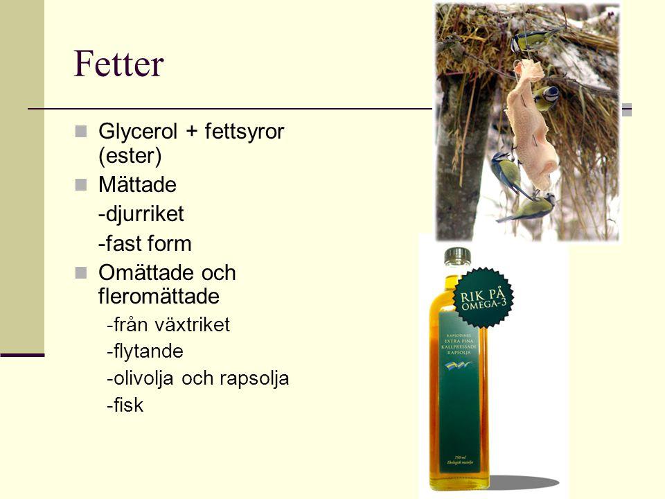 Fetter Glycerol + fettsyror (ester) Mättade -djurriket -fast form