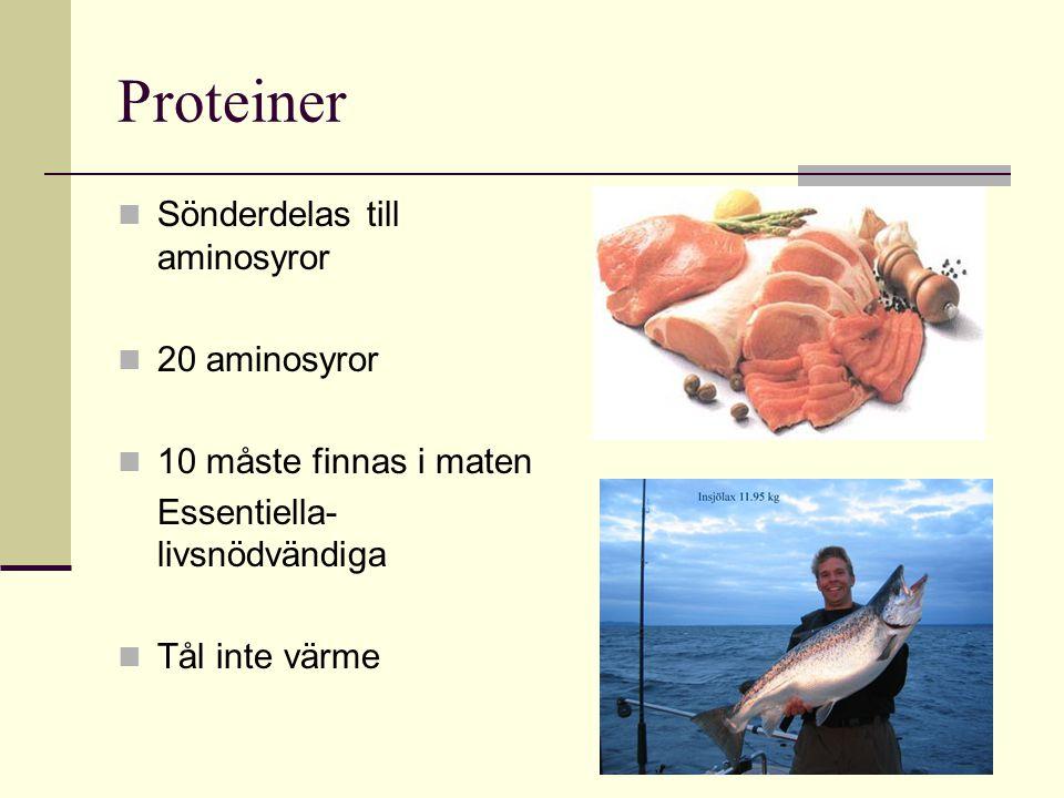 Proteiner Sönderdelas till aminosyror 20 aminosyror