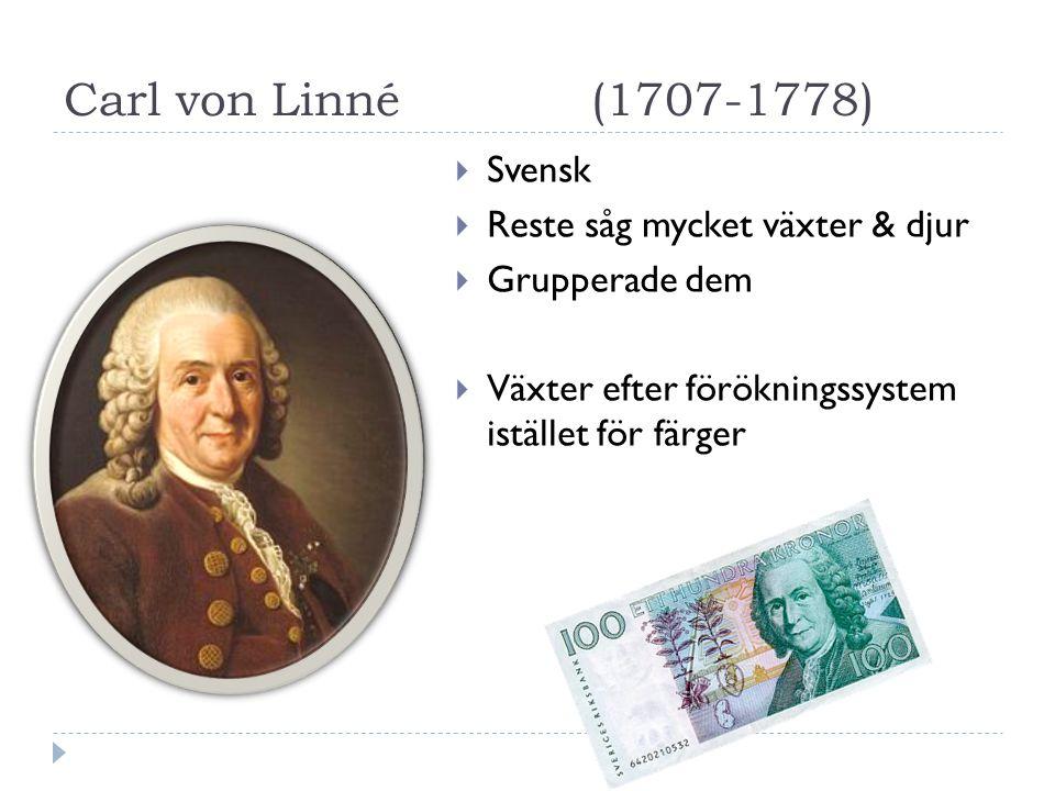 Carl von Linné (1707-1778) Svensk Reste såg mycket växter & djur