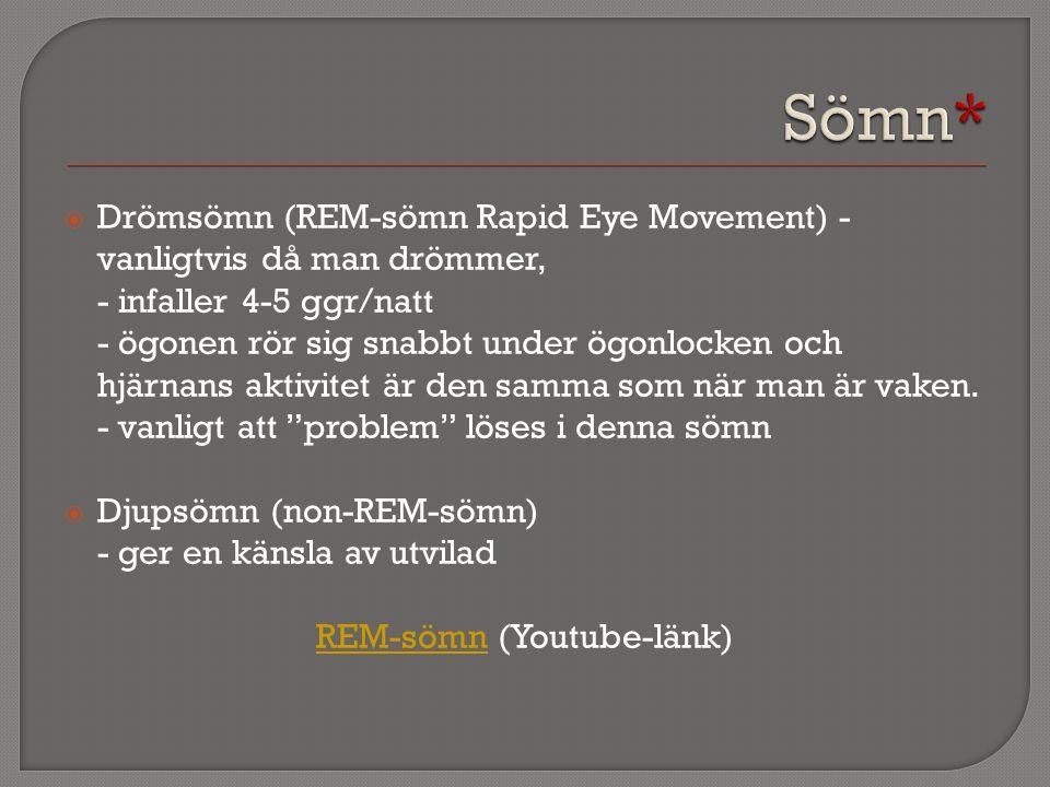 REM-sömn (Youtube-länk)