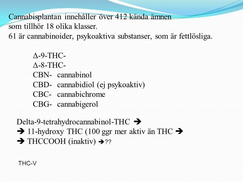Cannabisplantan innehåller över 412 kända ämnen