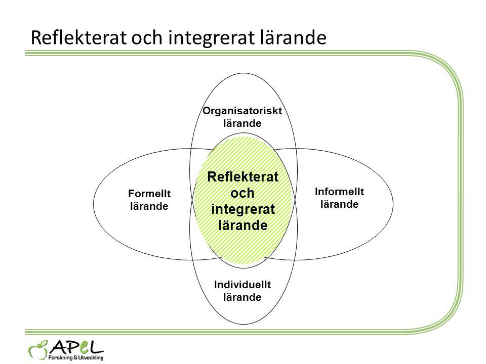 Reflekterat och integrerat lärande