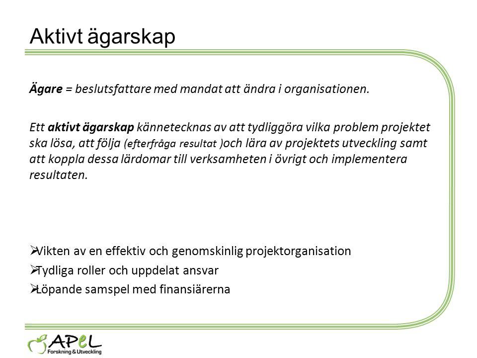 Aktivt ägarskap Ägare = beslutsfattare med mandat att ändra i organisationen.