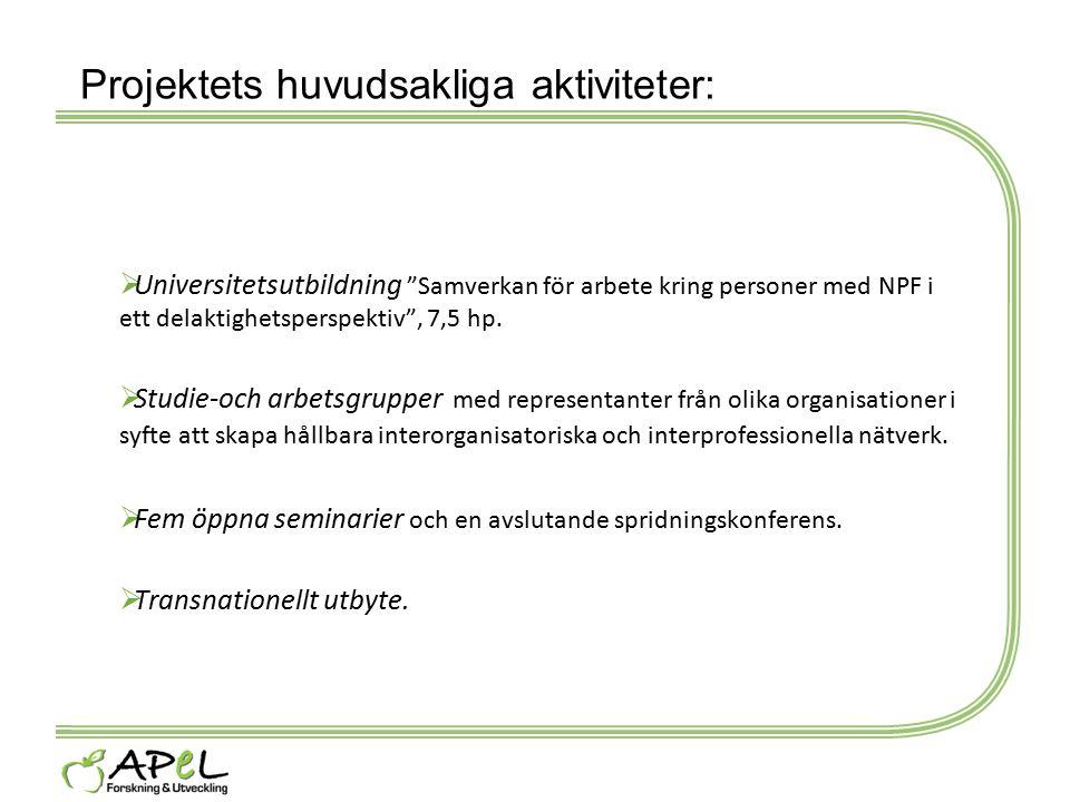 Projektets huvudsakliga aktiviteter: