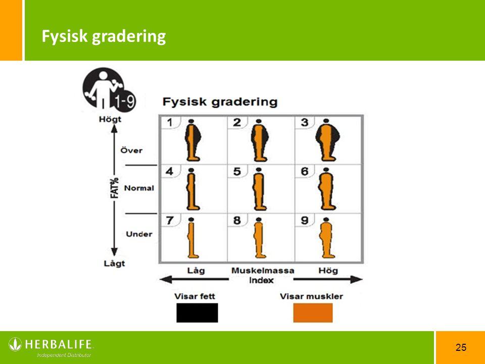 Fysisk gradering