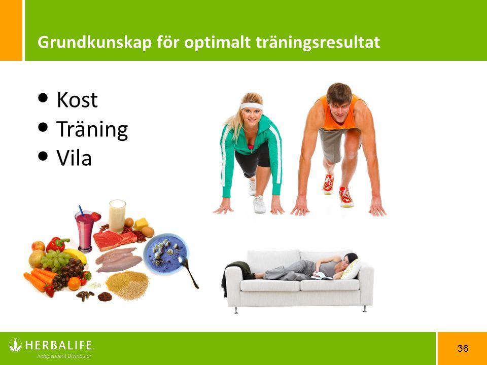 Grundkunskap för optimalt träningsresultat
