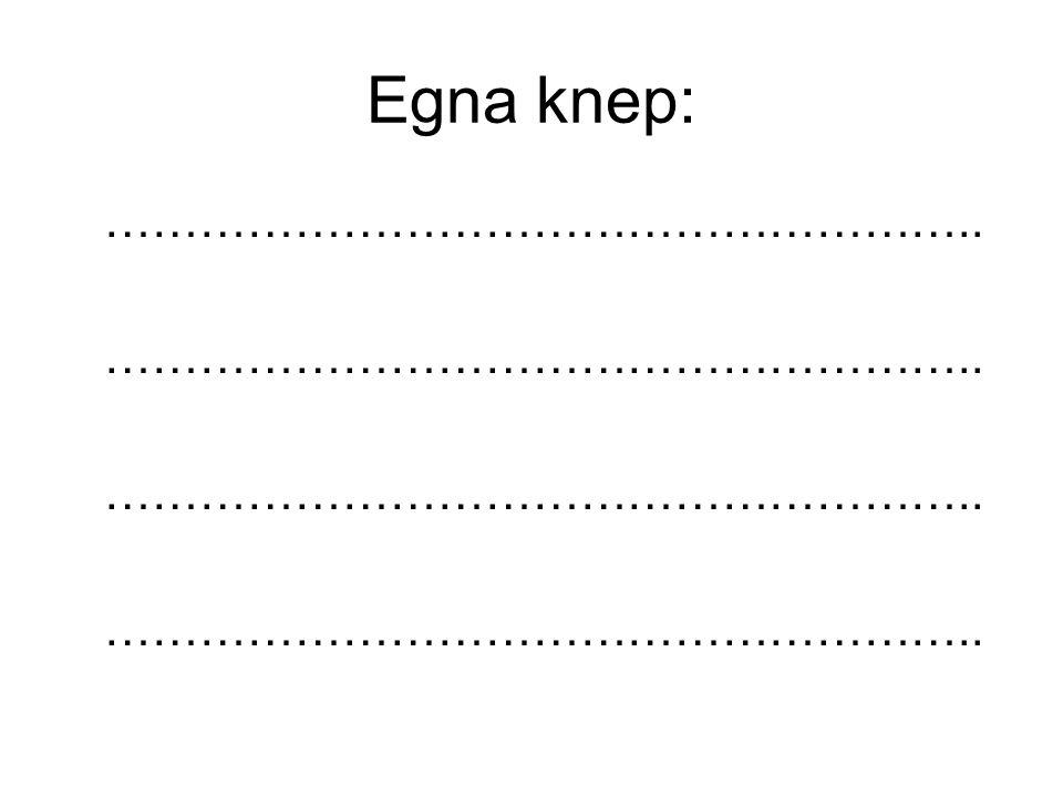 Egna knep: ………………………………………………..