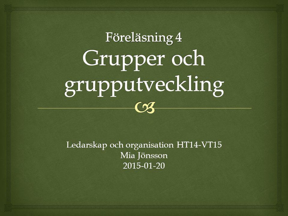 Föreläsning 4 Grupper och grupputveckling
