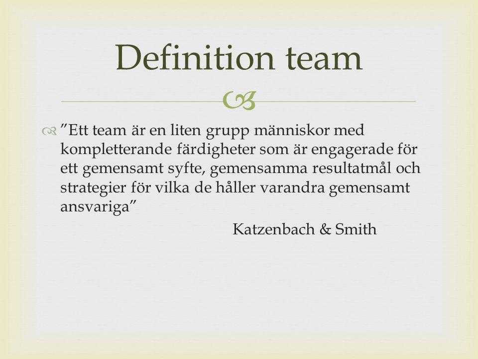 Definition team