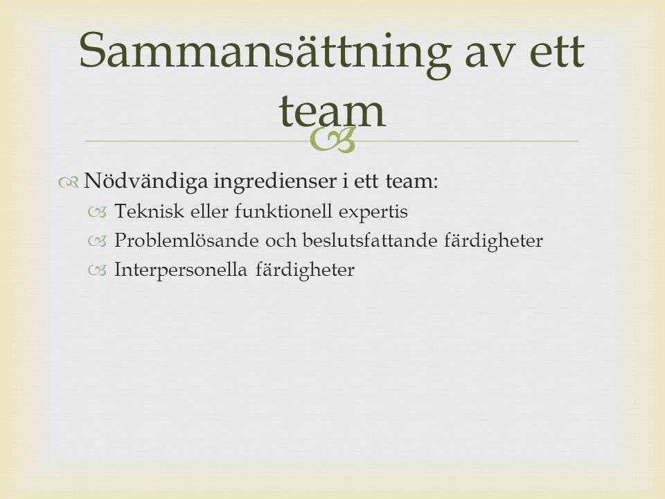 Sammansättning av ett team