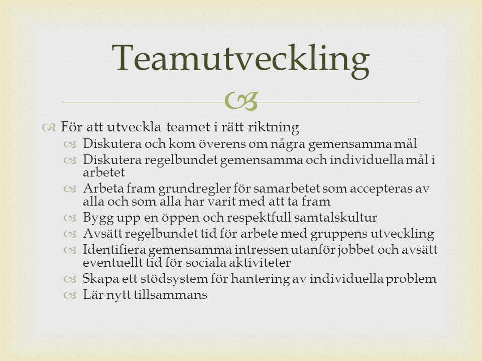 Teamutveckling För att utveckla teamet i rätt riktning