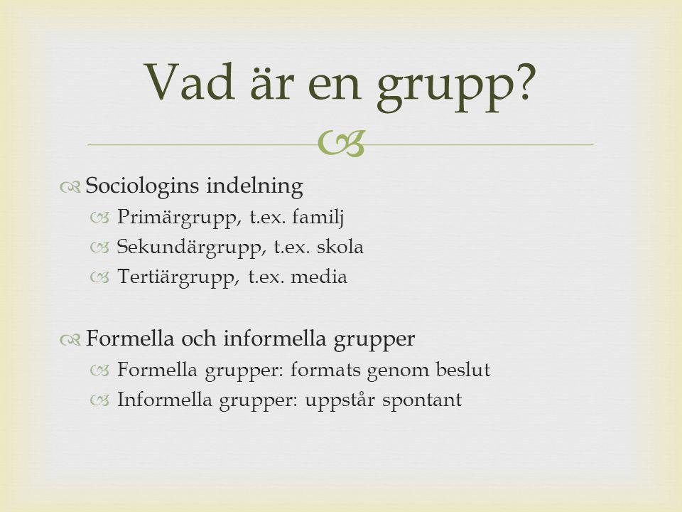 Vad är en grupp Sociologins indelning Formella och informella grupper